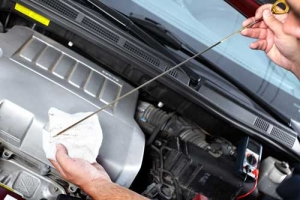 oil changes at cottman transmission and total auto care