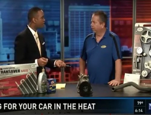Cottman of Columbia – Extreme Heat and Your Car – ON AIR INTERVIEW – News19 on WLTX-TV